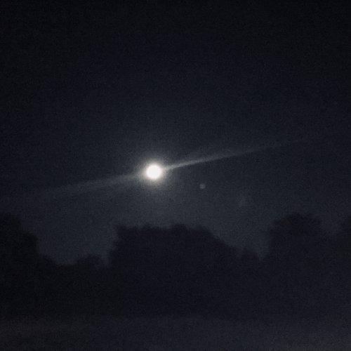 Moon Mars Winedale